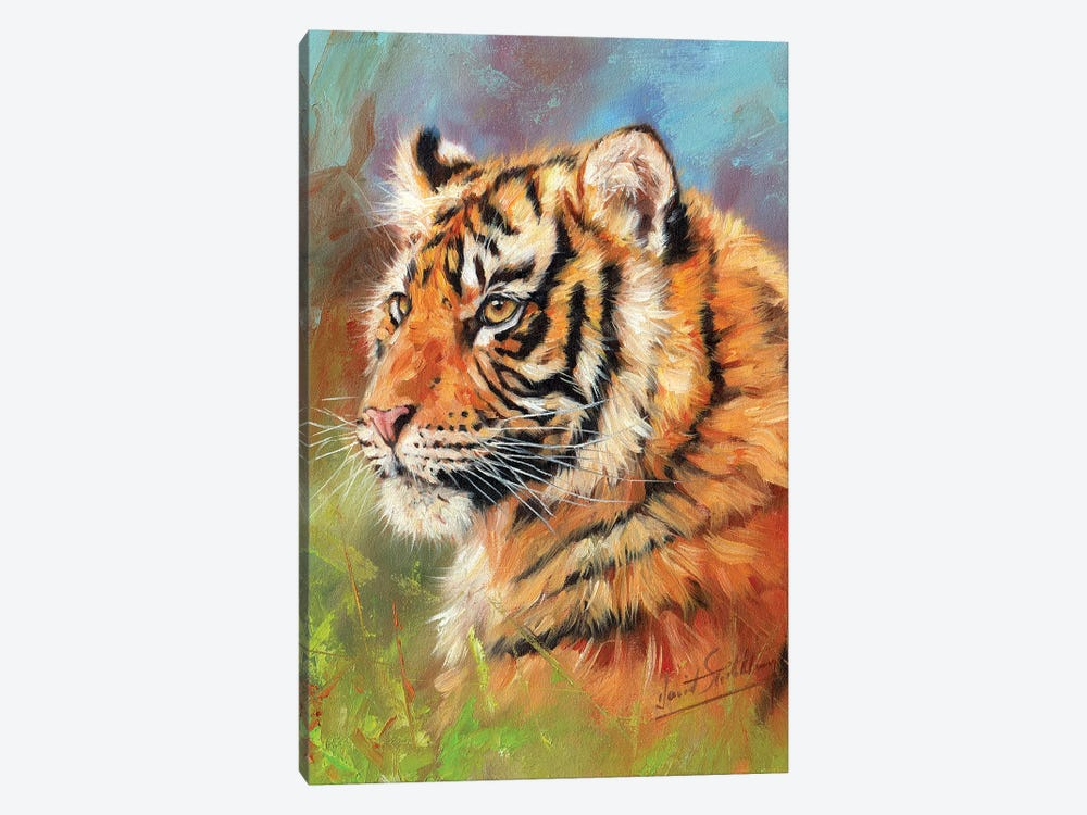 Young Amur Tiger by David Stribbling 1-piece Canvas Wall Art