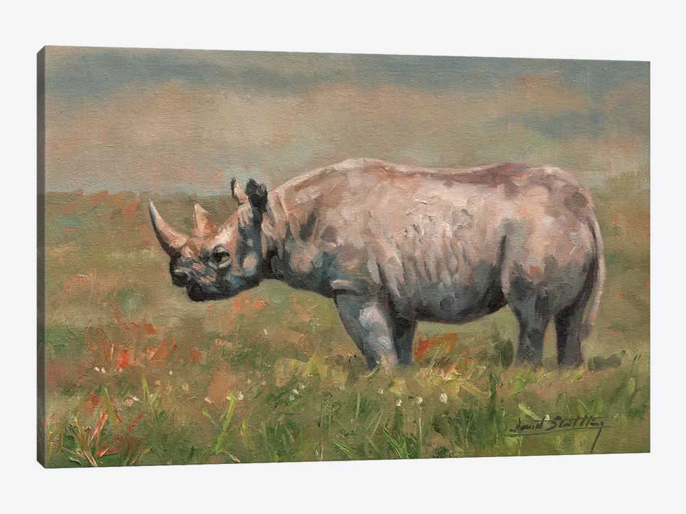 Black Rhino by David Stribbling 1-piece Canvas Print