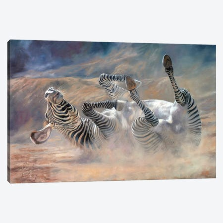 Zebra Rockin And Rollin Canvas Print #STG183} by David Stribbling Canvas Wall Art