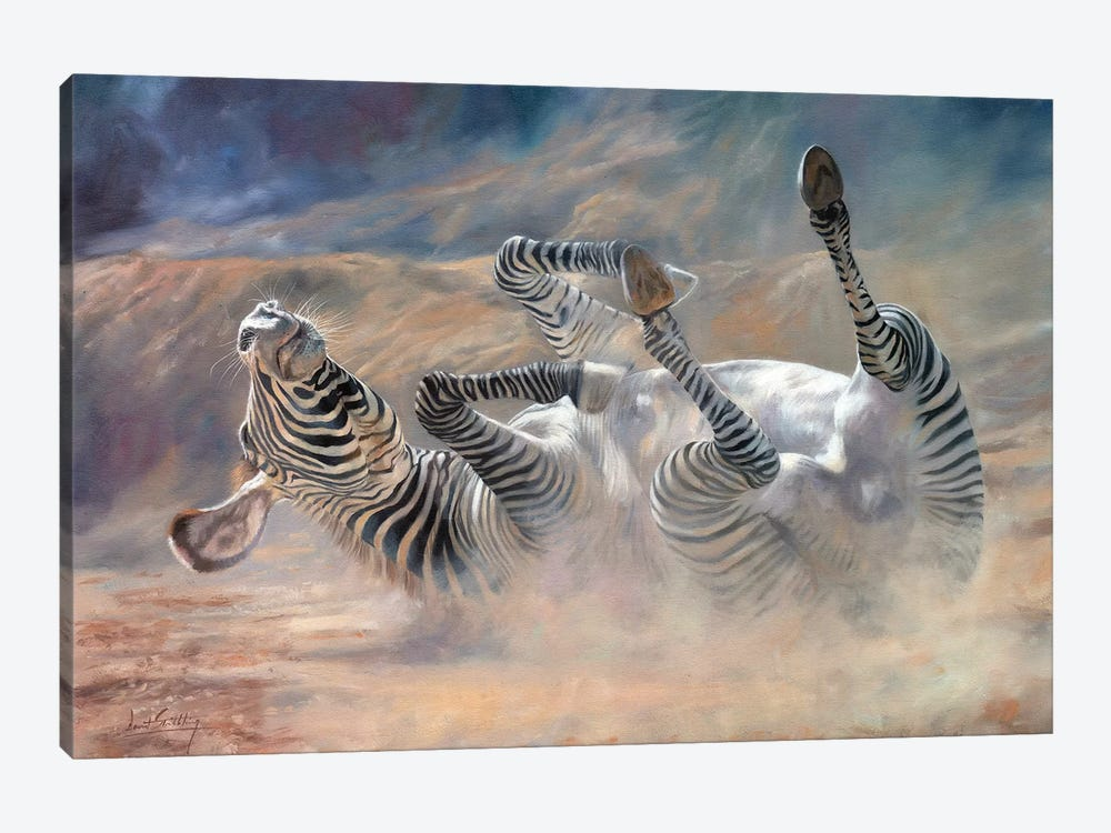 Zebra Rockin And Rollin by David Stribbling 1-piece Canvas Art Print