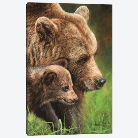 Brown Bear and Cub 3-Piece Canvas #STG186} by David Stribbling Canvas Print