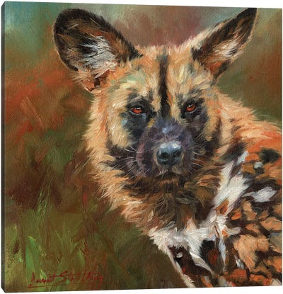 African Wild Dog Portrait Canvas Art Print