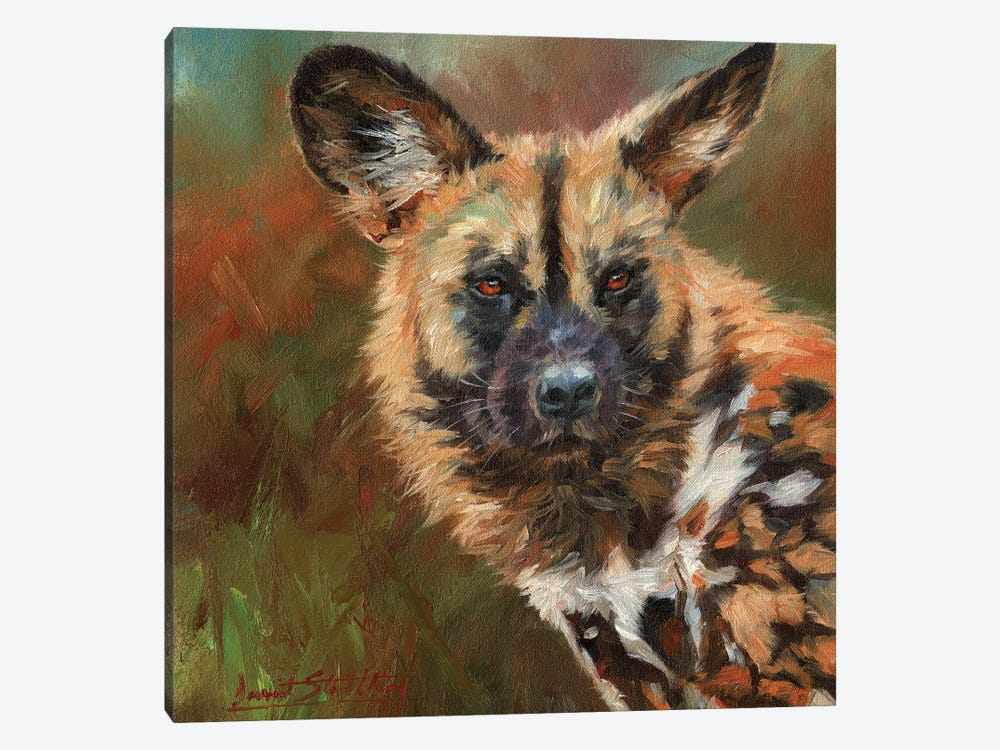 African Wild Dog Portrait by David Stribbling 1-piece Art Print
