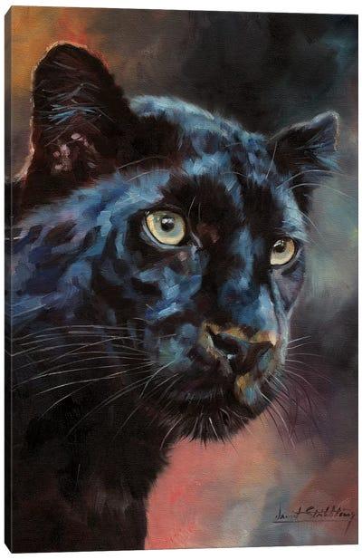 Black Panther I Canvas Art Print