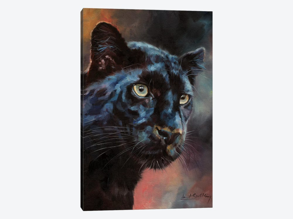 Black Panther I by David Stribbling 1-piece Canvas Artwork
