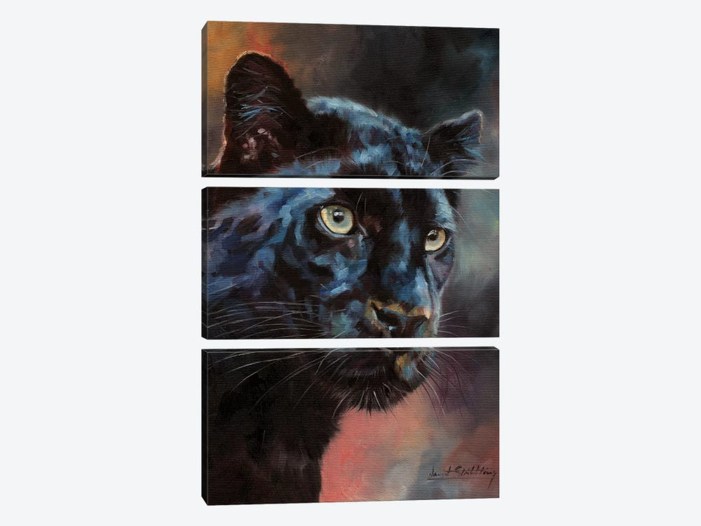 Black Panther I by David Stribbling 3-piece Canvas Artwork