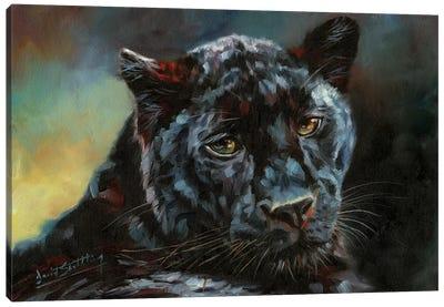 Black Panther II Canvas Art Print