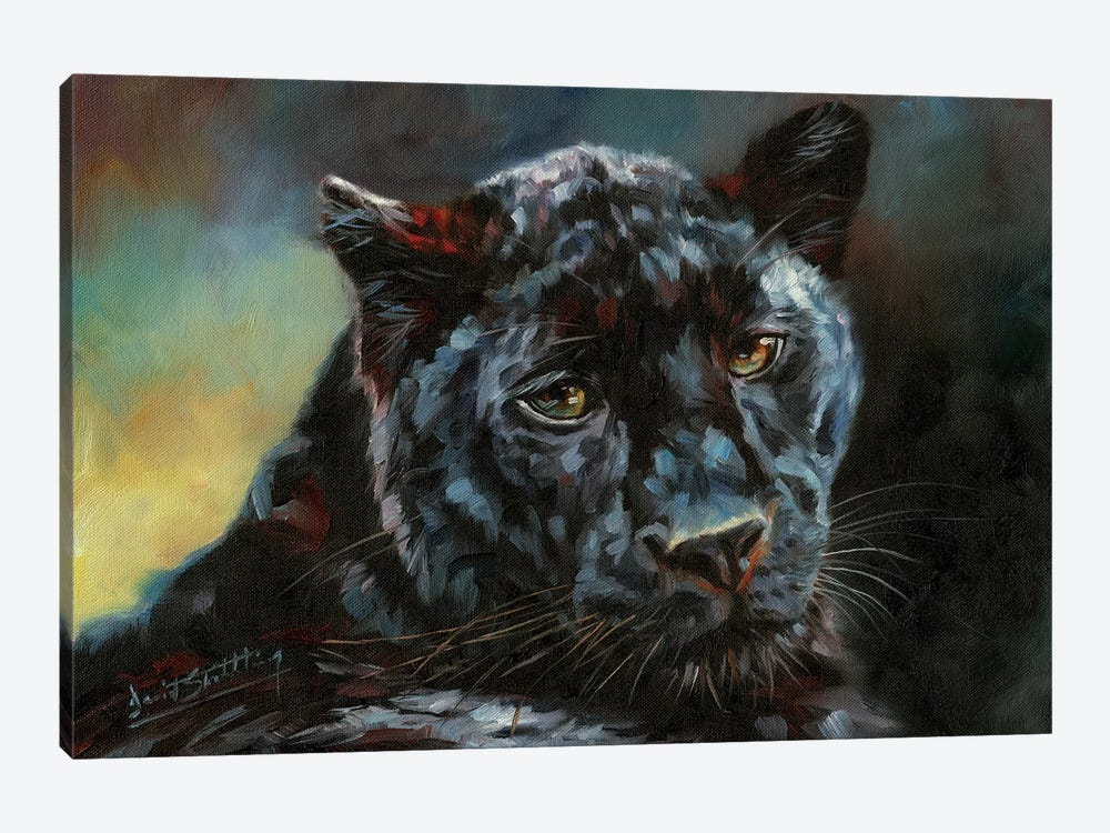 Black Panther II by David Stribbling 1-piece Canvas Print