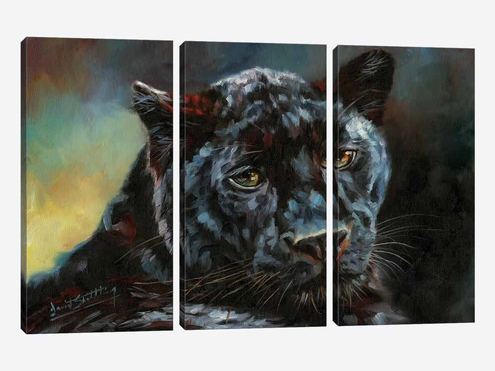 Black Panther II by David Stribbling 3-piece Canvas Print