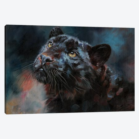 Black Panther III Canvas Print #STG202} by David Stribbling Canvas Art Print