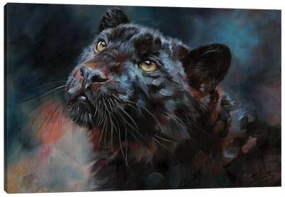 Black Panther III Canvas Art Print