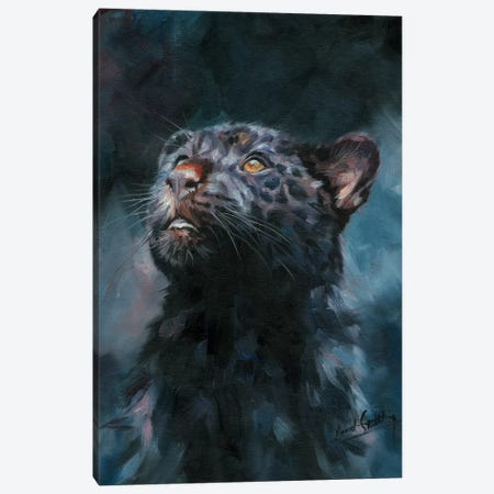 Black Panther V Canvas Print #STG204} by David Stribbling Canvas Art