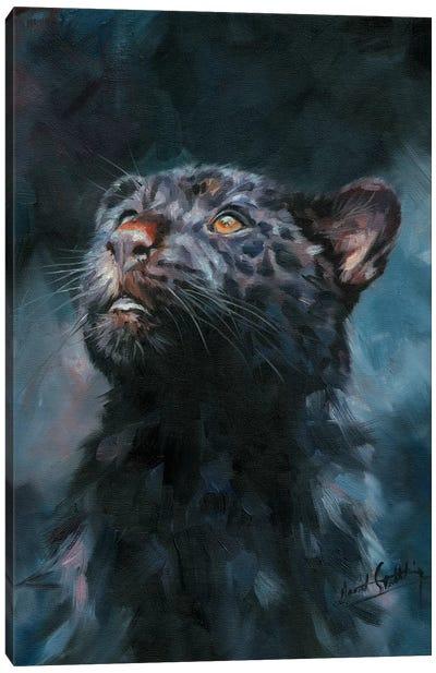 Black Panther V Canvas Art Print