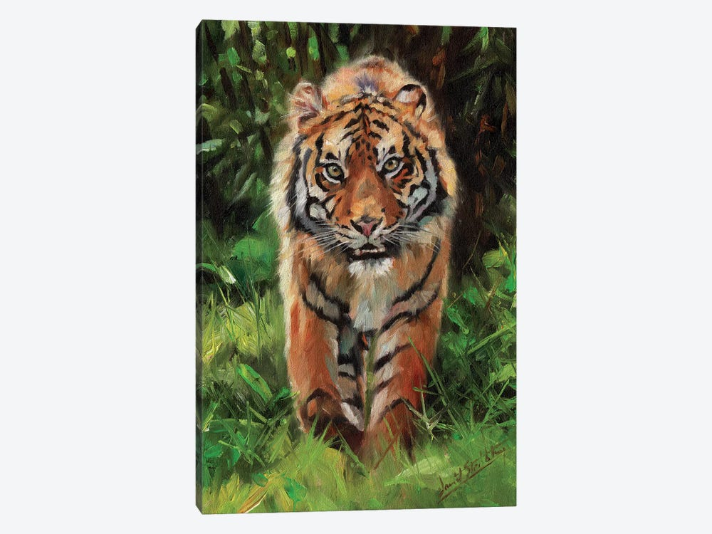 Tiger Prowl by David Stribbling 1-piece Canvas Wall Art