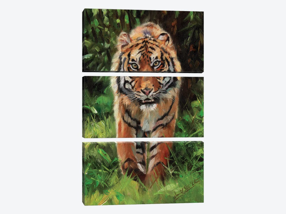 Tiger Prowl by David Stribbling 3-piece Canvas Wall Art