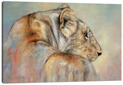 Lady In Waiting (Lioness) Canvas Art Print