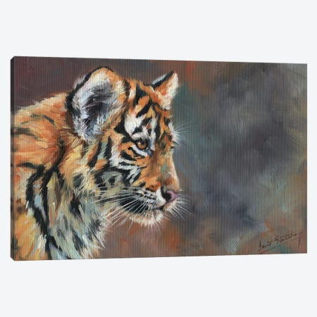 Tiger Cub Portrait In Oil Canvas Print #STG231} by David Stribbling Canvas Art
