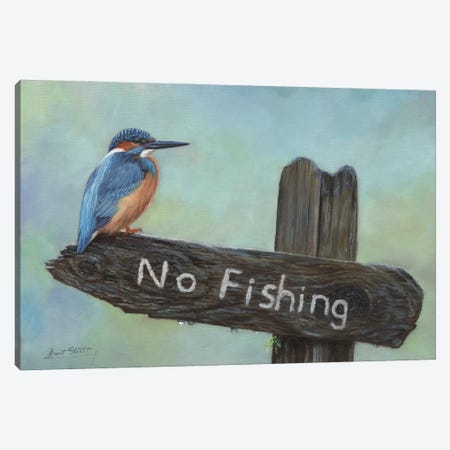 Kingfisher No Fishing Canvas Print #STG237} by David Stribbling Art Print