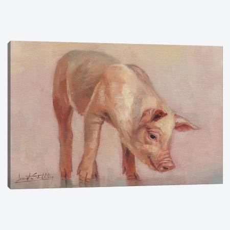 Little Pig 3-Piece Canvas #STG240} by David Stribbling Canvas Print