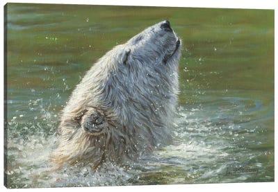 Polar Bear Splash Canvas Art Print