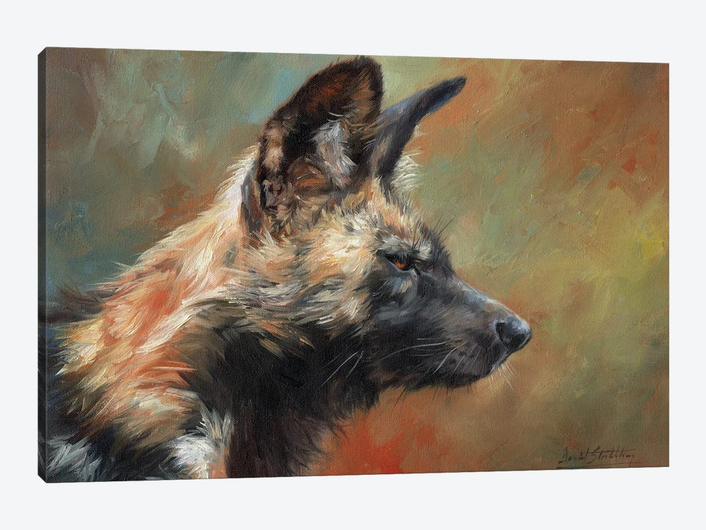 African Hunting Dog (Wild Dog) by David Stribbling 1-piece Canvas Art Print