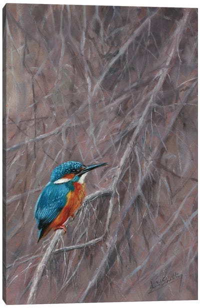 Kingfisher Waterside Canvas Art Print