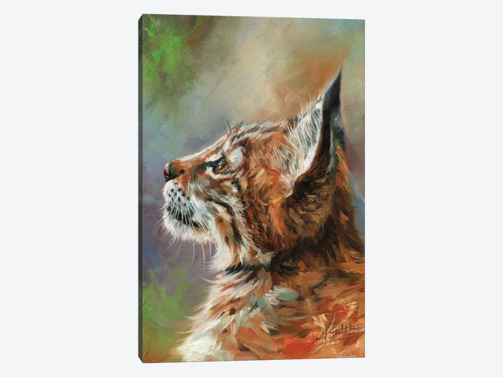 Lynx Wild Cat by David Stribbling 1-piece Canvas Print