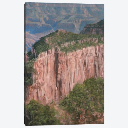 Grand Canyon North Rim Canvas Print #STG267} by David Stribbling Canvas Art