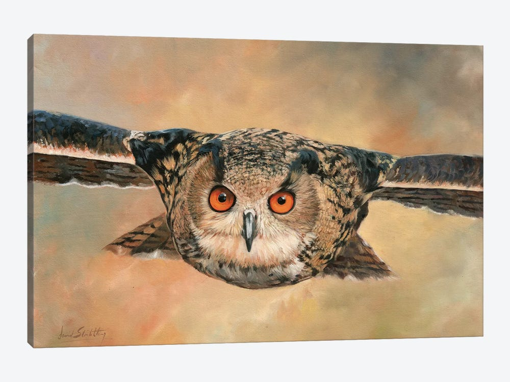 Eagle Owl by David Stribbling 1-piece Canvas Print