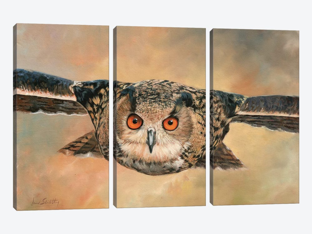 Eagle Owl by David Stribbling 3-piece Canvas Art Print
