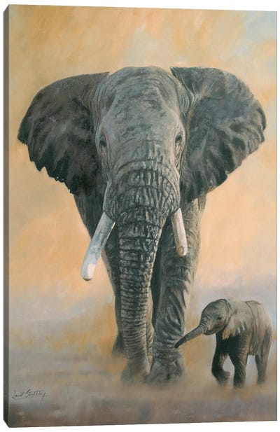 Elephant And Baby by David Stribbling Canvas Art Print