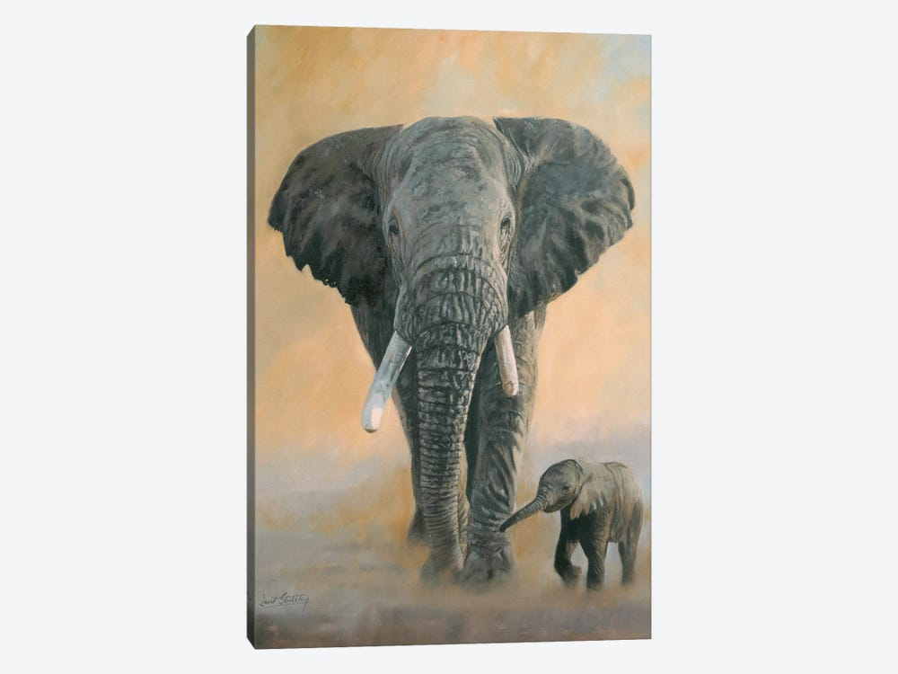 Elephant And Baby by David Stribbling 1-piece Canvas Artwork