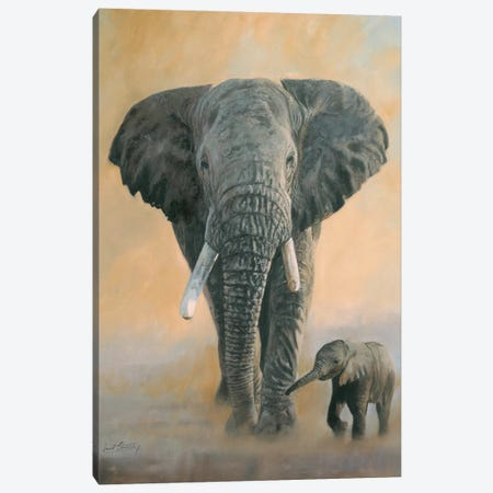 Elephant And Baby Canvas Print #STG34} by David Stribbling Canvas Art