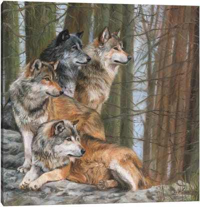 Four Wolves Canvas Art Print