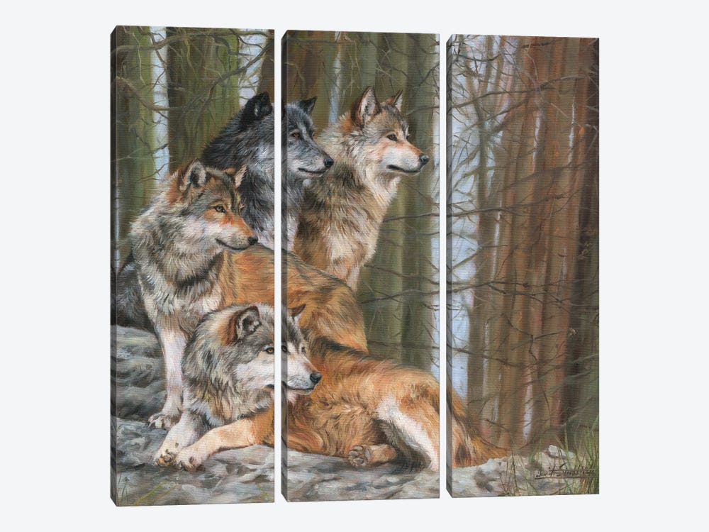 Four Wolves by David Stribbling 3-piece Canvas Artwork
