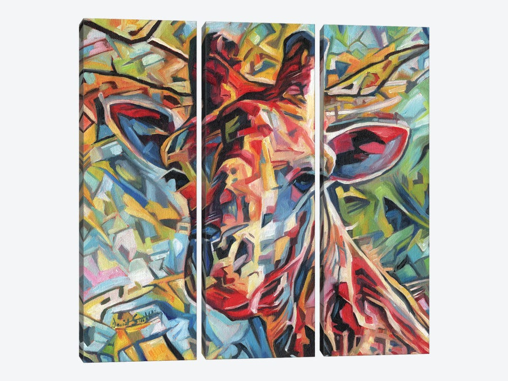 Giraffe Of Many Colours by David Stribbling 3-piece Canvas Art Print