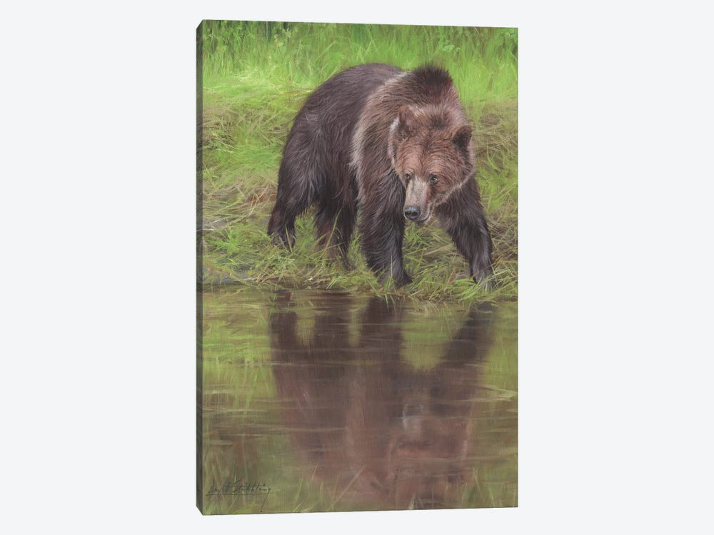 Grizzly Bear At Water's Edge by David Stribbling 1-piece Canvas Artwork
