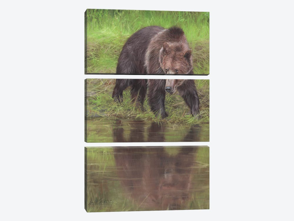 Grizzly Bear At Water's Edge by David Stribbling 3-piece Canvas Art