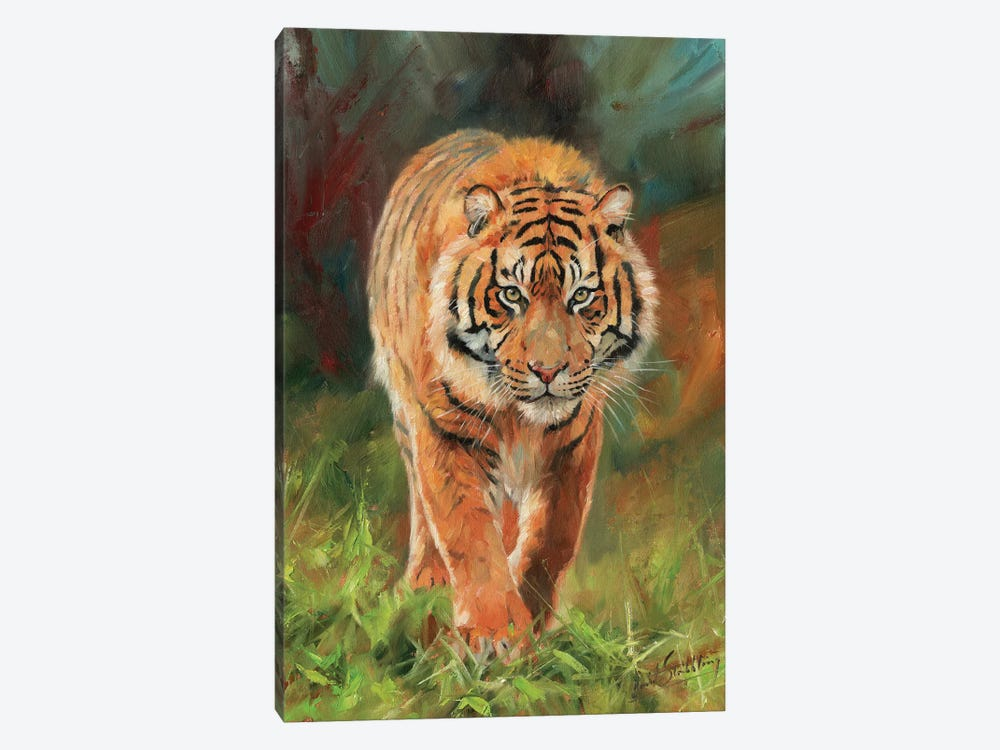 Amur Tiger by David Stribbling 1-piece Canvas Artwork