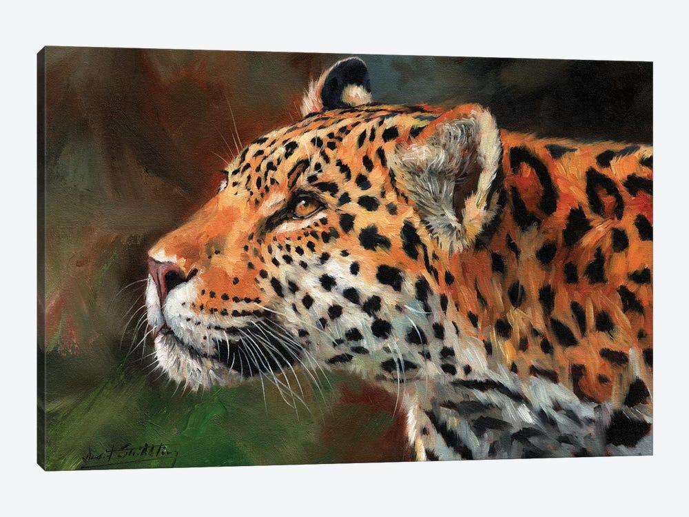 Jaguar Look by David Stribbling 1-piece Canvas Art
