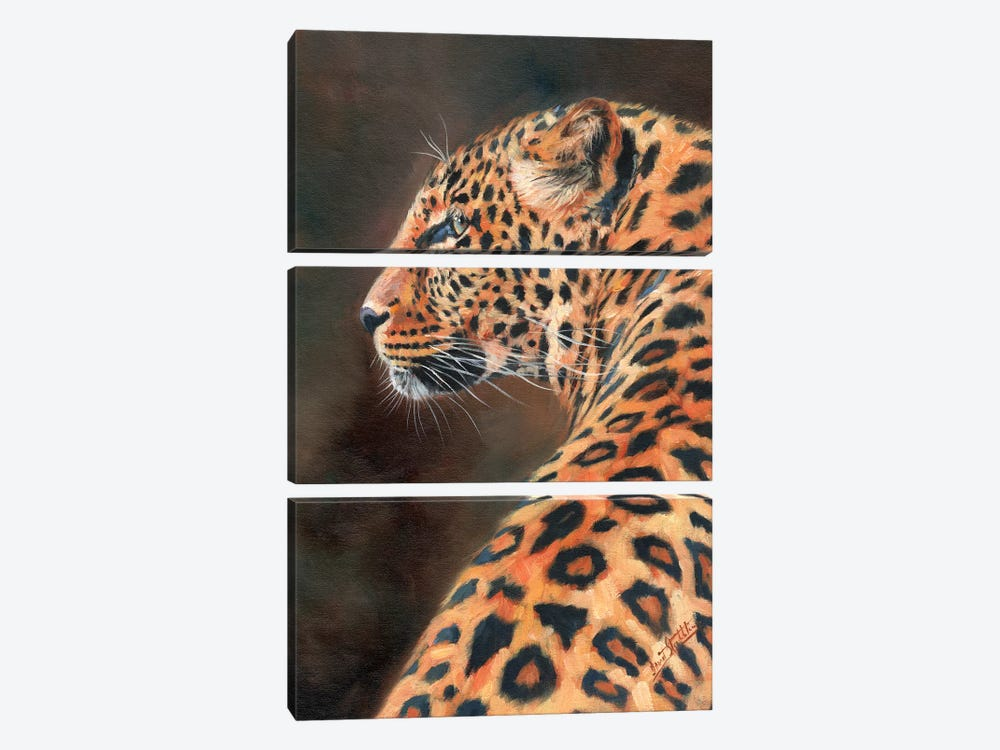 Leopard Profile by David Stribbling 3-piece Canvas Wall Art