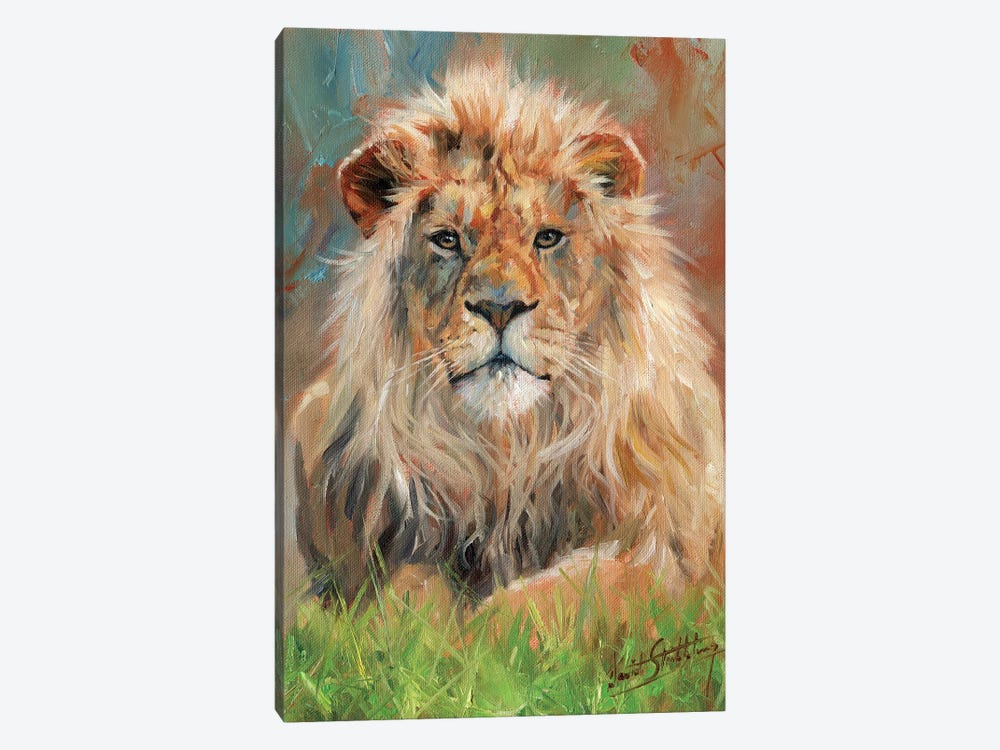 Lion Front by David Stribbling 1-piece Canvas Artwork