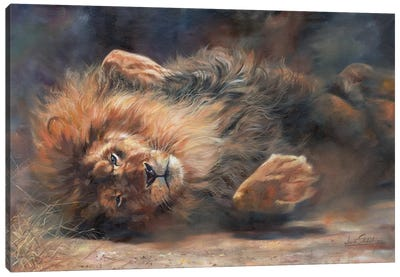 Lion Rockin' And Rollin' by David Stribbling Canvas Art Print