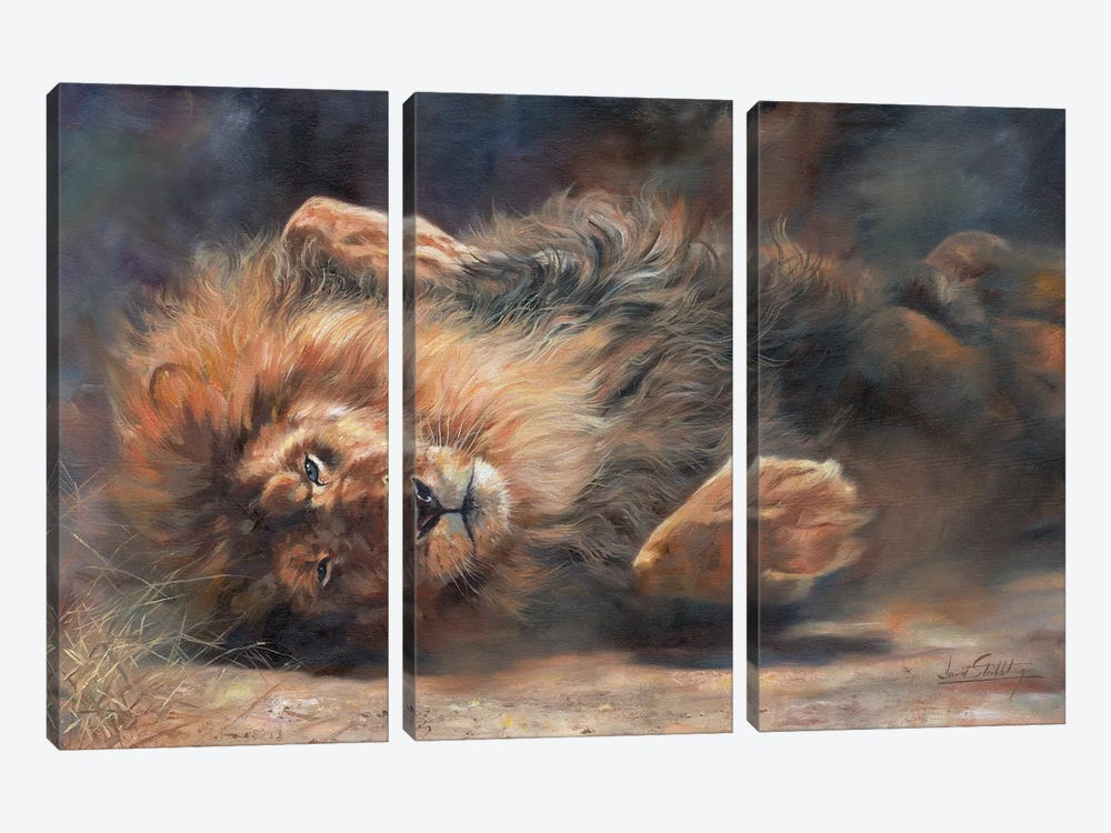 Lion Rockin' And Rollin' by David Stribbling 3-piece Canvas Wall Art