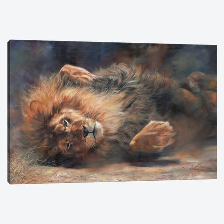 Lion Rockin' And Rollin' Canvas Print #STG69} by David Stribbling Canvas Wall Art