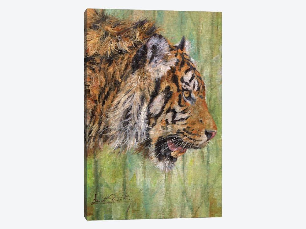 Amur Tiger Profile by David Stribbling 1-piece Canvas Art