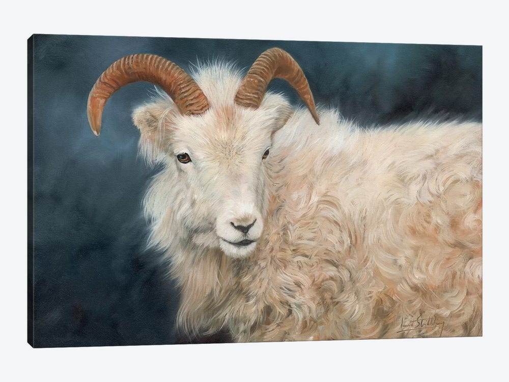 Mountain Goat I by David Stribbling 1-piece Canvas Print