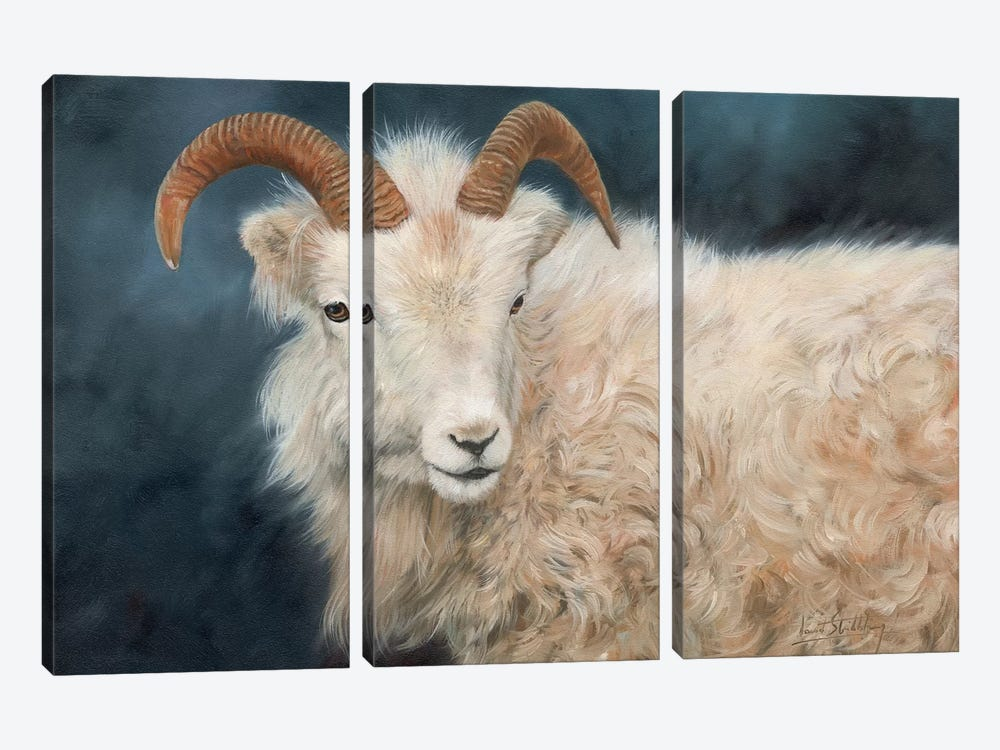 Mountain Goat I by David Stribbling 3-piece Canvas Art Print