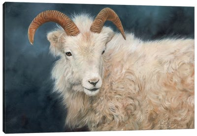 Mountain Goat I by David Stribbling Canvas Art Print
