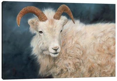Mountain Goat I Canvas Art Print